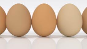 Fila de huevos