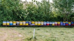 Fila de las colmenas de la abeja en un campo Fotos de archivo
