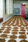 Fila de las galletas de la pacana Fotos de archivo libres de regalías