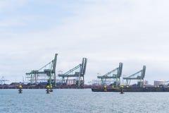 Fila de las grúas del puerto Fotografía de archivo libre de regalías