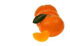 Fila de las naranjas de la mandarina Imagen de archivo libre de regalías
