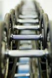 Fila de las pesas de gimnasia 1 Fotografía de archivo libre de regalías