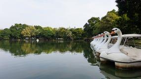 Fila de los barcos del ciclo en el agua en el parque público Imagenes de archivo