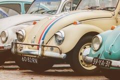 Fila de los escarabajos de Volkswagen del vintage a partir de los años 70 Imagen de archivo