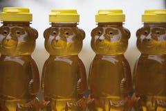Fila de los osos de miel Fotografía de archivo