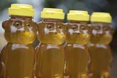Fila de los osos de miel de oro Imagen de archivo