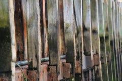 Fila de los polos de madera que forman una pared del puerto Foto de archivo libre de regalías