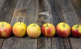 Fila de manzanas orgánicas en la madera Imágenes de archivo libres de regalías