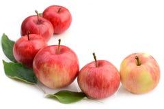 Fila de manzanas rojas en el fondo blanco imágenes de archivo libres de regalías