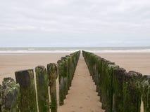 Fila de rompeolas de madera en la playa Fotos de archivo