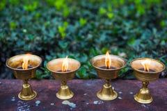 Fila de velas ardientes budistas en una pared Imágenes de archivo libres de regalías