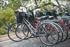 Fila degli affitti della bicicletta Fotografie Stock Libere da Diritti