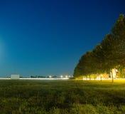 Fila degli alberi alla notte Fotografie Stock