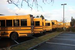 Fila degli scuolabus Fotografia Stock Libera da Diritti