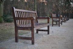 Fila dei banchi di legno in parco come simbolo di rilassamento e dell'avere del resto fotografia stock