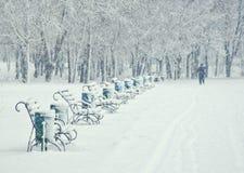 Fila dei banchi nel parco alle precipitazioni nevose Fotografia Stock Libera da Diritti