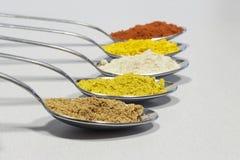 Fila dei cucchiai con differenti generi di spezie Fotografia Stock