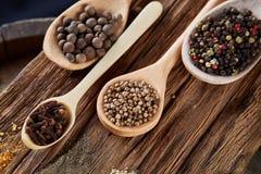 Fila dei cucchiai di legno con le spezie su fondo d'annata, prospettiva di diminuzione, primo piano, fuoco selettivo Fotografia Stock