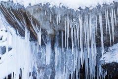 Fila dei ghiaccioli gelidi in natura Fotografia Stock
