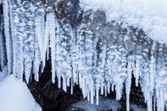 Fila dei ghiaccioli gelidi in natura Immagine Stock Libera da Diritti