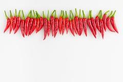 Fila dei peperoni tailandesi Immagine Stock