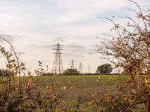 Fila dei piloni di elettricità di agricoltura lontana dell'azienda agricola del campo di distanza Fotografie Stock