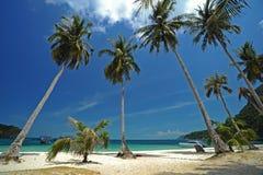 Fila del coco en la playa Fotografía de archivo libre de regalías