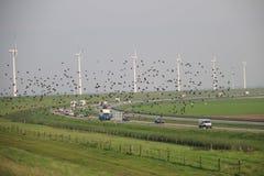 Fila del generatore eolico lungo la riva del IJsselmeer con il ponte di camminata a  Fotografia Stock