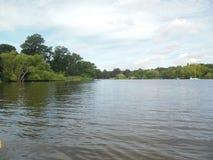 Fila del lago Fotografie Stock