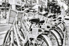 Fila della bicicletta Fotografie Stock Libere da Diritti