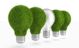 Fila della lampadina dell'erba verde con la lampadina regolare Fotografia Stock Libera da Diritti