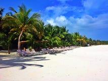 Fila della spiaggia Fotografia Stock Libera da Diritti