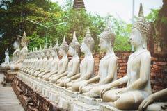 Fila della statua di Buddha del cemento bianco con luce solare a Wat Yai Chai Mongkol, si Ayutthaya, Tailandia di Phra Nakhon Bel immagini stock