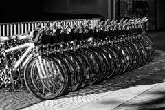 Fila delle biciclette parcheggiate alla via del mercato Fotografia Stock Libera da Diritti