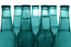 Fila delle bottiglie di birra Fotografie Stock