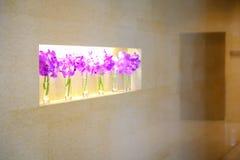Fila delle orchidee porpora variopinte in piccoli vasi di vetro in roo dell'hotel Fotografia Stock