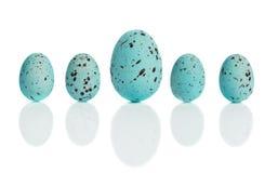 Fila delle uova blu Immagine Stock Libera da Diritti