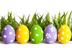 Fila delle uova di Pasqua su erba Fotografia Stock