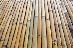 Fila di bambù Fotografie Stock Libere da Diritti