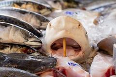 Fila di frutti di mare nel mercato asiatico Fotografia Stock