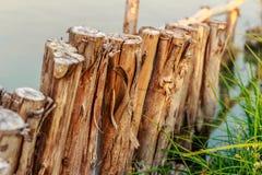 Fila di legname nel bordo della laguna Immagini Stock Libere da Diritti