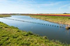 Fila lunga delle poste di legno nella superficie specchio-liscia dell'acqua Immagine Stock