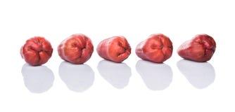 Fila Rose Apple Fruit esotica II Immagine Stock