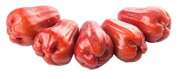 Fila Rose Apple Fruit esotica XII Fotografia Stock