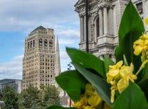 Filadelfia otoczenia i urząd miasta zdjęcie stock