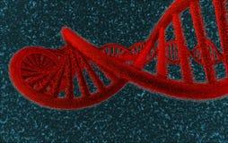 DNA en el rojo - #2 Foto de archivo libre de regalías