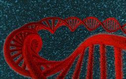 DNA en el rojo - #1 Fotos de archivo