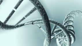 Filamento largo animado de la DNA 4K Lazo-capaz stock de ilustración