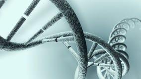 Filamento largo de la DNA stock de ilustración
