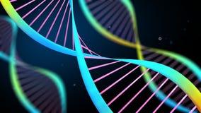 Filamentos animados de la DNA stock de ilustración